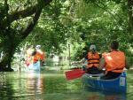 Félnapos vízitúra - Bodak és környéke