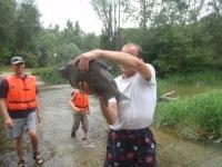 Gyuri kézzel fogot halat
