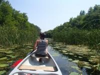 prichádzame na jazero víl