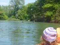 len hlava a chvost strčí im von z vody :)